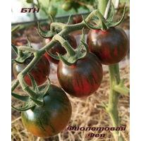 Семена томата Фиолетовая Фея
