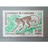 Камерун, 1962  Обезьяна