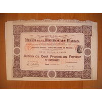 Societe Anonyme des Mines de la Doubovaia Balka (Дубовая Балка), Акция в 100 франков, 1913 г.