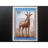 Конго 1959 колония Бельгии антилопа