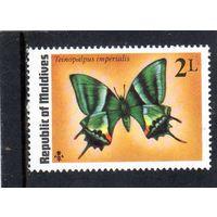 Мальдивы. Ми-605.Фауна. Бабочка.Kaiser-i-Hind (Teinopalpus imperialis).1975.