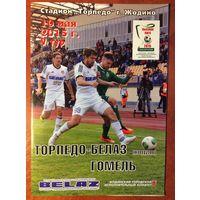Торпедо-БелАЗ (Жодино) - Гомель (10.05.2015)