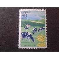 Япония 1995 стадо коров, одиночка