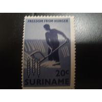 Суринам 1963 крестьянин в поле