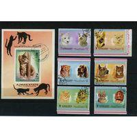 Аджман 1972г, породы кошек и собак, 6м. 1 блок.