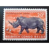 Конго 1959 колония Бельгии носорог