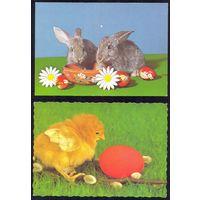 Фауна Венгрия пасха кролик цыплёнок / цена за 2 /