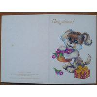 Снапиро Т. Поздравляю! 1985 г. Двойная мини-открытка. Чистая.