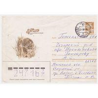 ХМК СССР, прошедший почту. Дальневосточный кот