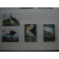 Марки - Кот дИвуар фауна птицы