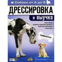 Все о собаке (серия документальных фильмов): выбор, породы, уход, воспитание, послушание, выучка и дрессировка