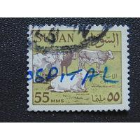Судан. Фауна.