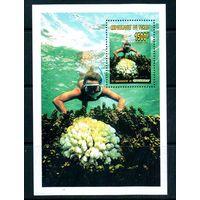 Морская флора Чад 1996 год 1 чистый блок