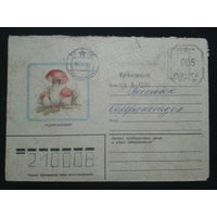 1982 подосиновик прошло почту