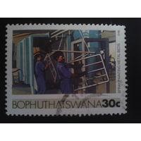 Борхусатсвана анклав ЮАР 1985 мебельная индустрия