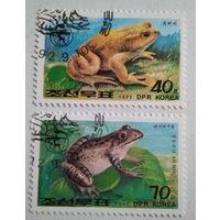 Корея 1992. Лягушки