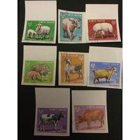 Домашние животные. Вьетнам, 1979, серия 8 марок(б/перф)