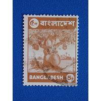 Бангладеш. Флора