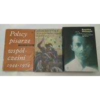 10 книг на польском одним лотом с рубля