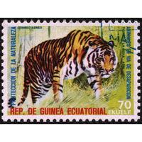 Кошки. Экваториальная Гвинея 1974. Тигр. Марка из серии. Гаш.