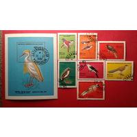 Марки блок Мадагаскар птицы