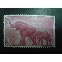 Гвинея 1957 колония Испании Слоны
