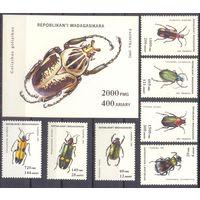 Мадагаскар фауна насекомые