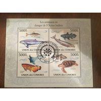 Коморские острова 2010. Редкие виды Индийского океана (блок)