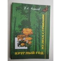 Круглый год из леса с грибами