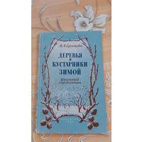 Ефимова Деревья и кустарники зимой Школьный определитель