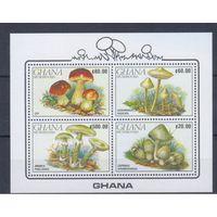 [1577] Гана 1990.  Грибы. 2 БЛОКА.
