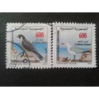 Тунис 2002 птицы Mi-3,2 евро гаш.
