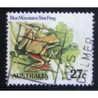 Австралия 1982 Mi# 783 (AU018) гаш.
