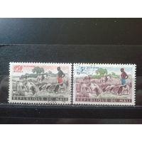 Мали 1961 Пастух и стадо