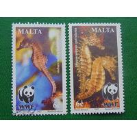 Мальта 2002г. Морская фауна.