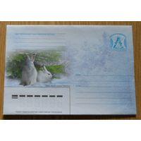 Беларусь 2007 фауна заяц-беляк