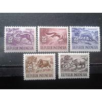 Индонезия 1956 Стандарт, фауна**