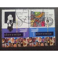Словения 1995 50 лет ООН сцепка