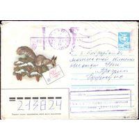 1985 год А.Рысс С Новым Годом! Белка с шишками 85-316