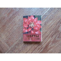 """Книга """"Цветы в вашем доме"""""""