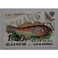 Корея.1992.рыба