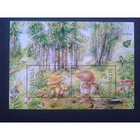 Словения 1996 грибы  блок