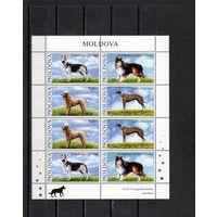 Молдова 2006 г Фауна Собаки МЛ