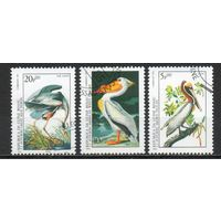 Птицы Гвинея-Биссау 1985 год 3 марки