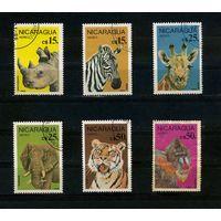 Никарагуа 1986г. звери. 6м.