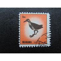 Манама 1972г. Фауна.