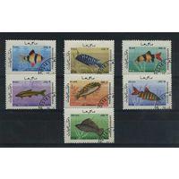 Афганистан 1986г. аквариумные рыбки. 7м.