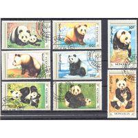 Монголия фауна панда охрана природы 8 марок