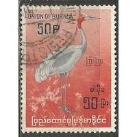 Бирма. Индийский журавль. 1964г. Mi#185.