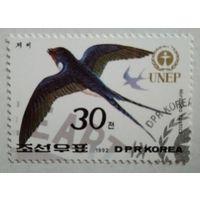Корея 1992. Ласточка